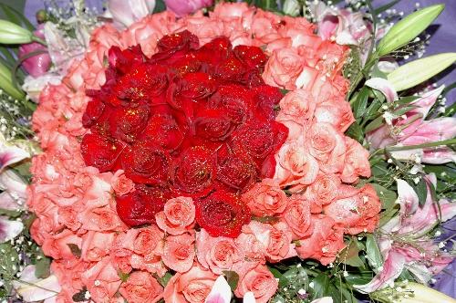 被丢弃于垃圾桶的百朵玫瑰