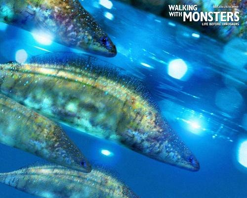 壁纸 海底 海底世界 海洋馆 水族馆 桌面 500_400