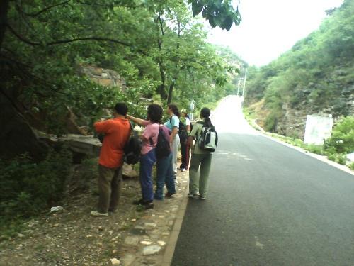 沟崖自然风景区位于昌平区十三陵德胜口110国道旁,距城区40公里,有8道