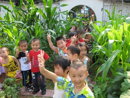激发幼儿探索科学 示幼创设种植园地