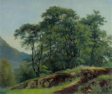 梦之旅:《山楂树》  西什金风景画