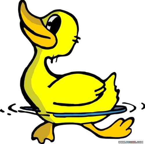 小鸭水中游简笔画