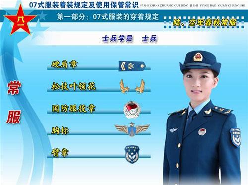 07式新军装军衔标志 胸标 臂章图片